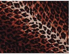 wassertransferdruck folie leopard cd 83 100 x 50 cm bei