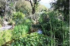 giardini mortella ischia giardini la mortella sfumature verdi
