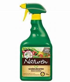 bek 228 mpfung der spinnmilben an gurken n 252 tzliche tipps