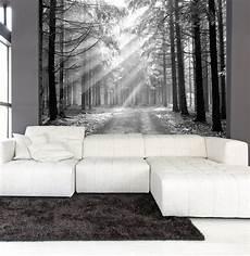 wandbilder grau weiss items similar to wall mural black and white of coniferous