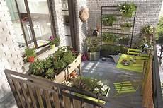 un potager sur le balcon d 233 tente jardin