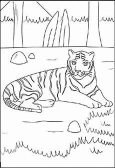 Malvorlagen Tiere Zum Ausdrucken Zum Ausdrucken Malvorlagen Und Ausmalbilder Tieren Zum Ausdrucken