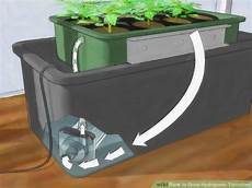 How To Grow Hydroponic Tomatoes With Pictures Wikihow