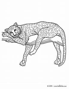 panther coloring pages hellokids