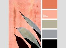 shades of gray paint