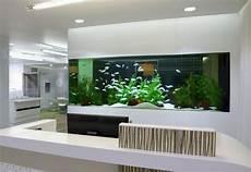 wall mounted fish tank and aquarium elonahome