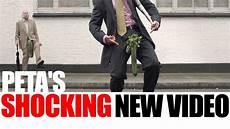 peta releases veggie video for world vegan day youtube