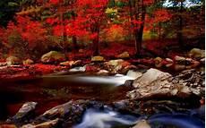 Hd Autumn Background