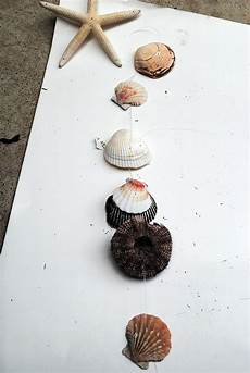 Basteln Mit Muscheln Windspiel - seashell wind chime tutorial u create