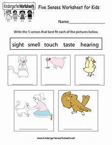 five sense worksheet new 835 five senses free worksheets