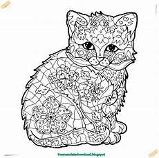 Malvorlagen Kostenlos Tiere Katzen Neu Malvorlagen Kostenlos Tiere Katzen Color Photo
