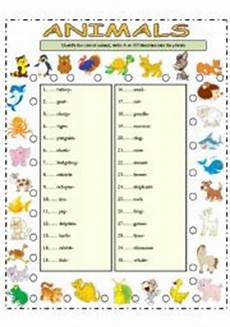 animal plural worksheets 14355 worksheets the animals worksheets page 41