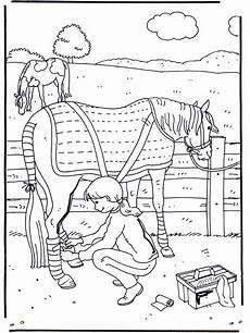 care horses