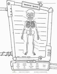 science worksheets human skeleton 12216 skeleton diagram worksheet education