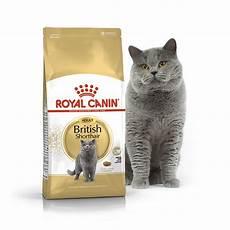 royal canin shorthair 10кг корм для взрослых