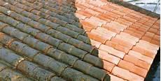 démousser une toiture d 233 mousser sa toiture