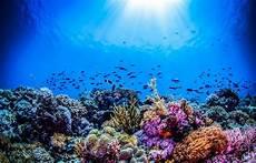 Nasa Mulai Berburu Kembali Ekspedisi Bawah Laut
