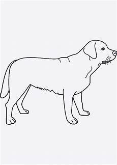 Malvorlagen Tiere Hunde Neu Ausmalbilder Tiere Hunde Welpen Photo