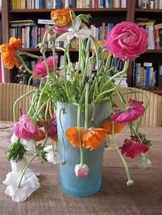 images gratuites vase pot de fleur fleuriste