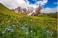 paesaggi fioriti bambini gratis in montagna hotel benessere trentino