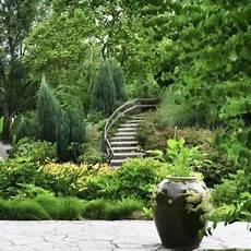Garten Verschönern Ohne Geld - narrow shrubs ehow