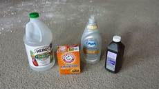 Eliminate Bathroom Urine Odor by The Ultimate Guide To Get Rid Of Cat Urine Smell Using