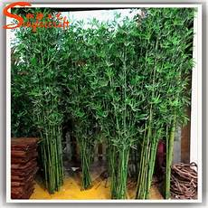 lucky bambou artificiel hotels lucky bamboo plants sale decorative bamboo palm