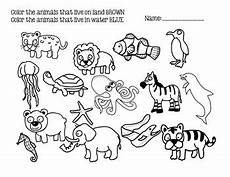 water animals worksheets for kindergarten 14080 land vs water animals by miss m s teachers pay teachers