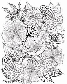 Malvorlagen Erwachsene Zum Ausdrucken 98 Einzigartig Blumenranken Zum Ausdrucken Das Bild