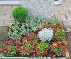 grabbepflanzung set urnengrab schatten halbschatten