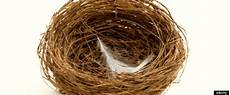 empty nest syndrom empty nesters 5 tips for those with newly empty nests