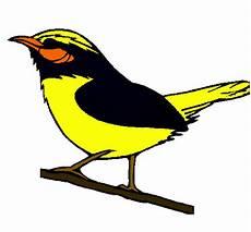 como dibujar un turpial dibujo de p 225 jaro silvestre pintado por turpial en dibujos net el d 237 a 15 09 10 a las 19 13 15