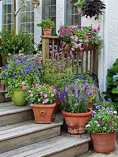 how to group container gardens together better homes