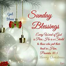 sunday blessings proverbs 30 5 christmas with images christmas blessings