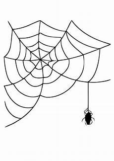 Malvorlagen Spinnennetz Malvorlage Spinnennetz Mit Spinne Ausmalbild 19625