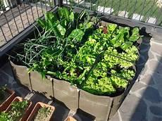 fare l orto in giardino orto in casa in quanti modi si pu 242 realizzare garden4us