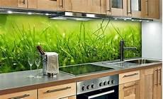 spritzschutz glas küche 35 kitchen splashbacks glass luxurious splash for the