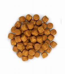 croquette chien quel type de croquettes donner 192 chien chien calme