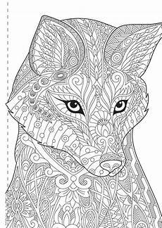 kaleidoscope colouring animals and more books