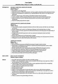 associate senior resume sles velvet