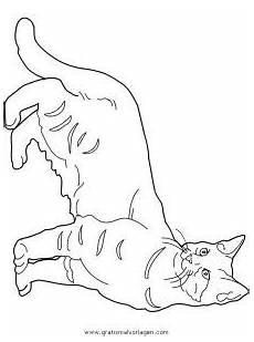Ausmalbilder Katzenkinder Katzen 117 Gratis Malvorlage In Katzen Tiere Ausmalen