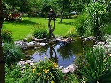 Free Images Grass Lawn Flower Backyard