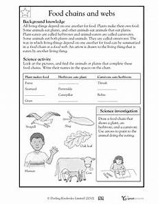 science worksheets websites 12458 3rd grade 4th grade science worksheets food chains and webs 4th grade science science
