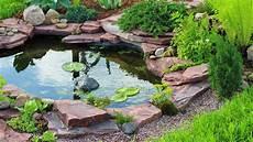 How To Build A Garden Pond A Pond Diy Doctor