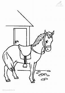 Malvorlage Fliegendes Pferd Malvorlage Pferd
