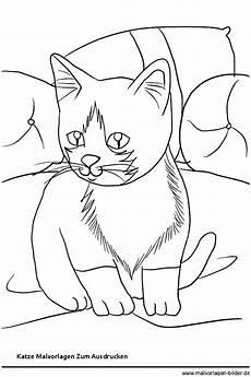 ausmalbilder katze und hund genial katze malvorlagen zum