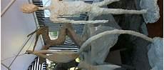 Workshop Betonskulpturen Lochau Aktuelles Zu Kultur