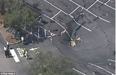 how is a sinkhole formed parking lot services of florida 70 foot sinkhole opens in ta supermarket parking lot
