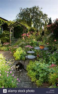 Country Cottage Garden Patio Terrace With Cat Table And
