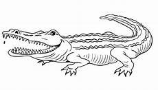 Malvorlagen Tiere Krokodil Ausmalbilder Krokodil Kostenlos Malvorlagen Zum